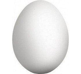 Яйцо вареное - Фото