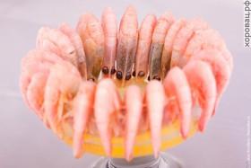 Креветки отварные - Фото