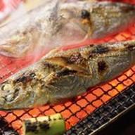 Сибас на мангале Фото