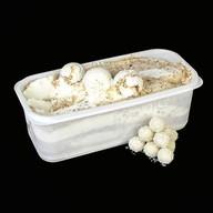 Мороженое с кокосовым кремом и миндалем Фото
