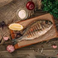 Шашлык из рыбы дорадо Фото