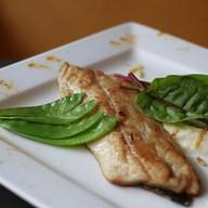 Филе красной рыбы на пюре из сельдерея Фото