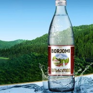 Минеральная вода Боржоми (газированная) Фото