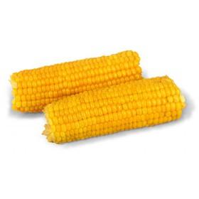 Кукуруза - Фото