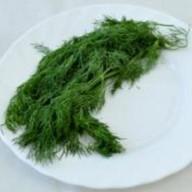 Зелень свежая Фото