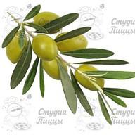 Дополнительно оливки Фото