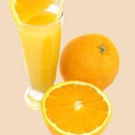Свежевыжатый апельсиновый сок Фото