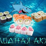 Голодная акула Фото