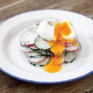 Салат из редиса с огурцом Фото