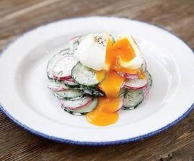 Салат из редиса с огурцом - Фото