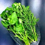 Букет душистой зелени Фото