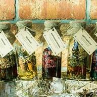 Чайный сбор с сиропом (цветущий луг) Фото