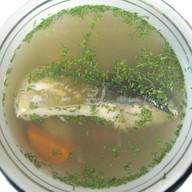 Уха с лососем Фото