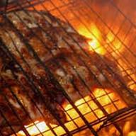 Цыпленок табака на углях с картошкой фри Фото