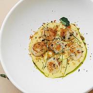 Морской гребешок с кремом из картофеля Фото