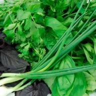 Зеленый букет Фото