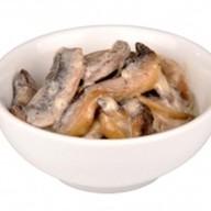 Шиитаке грибы Фото