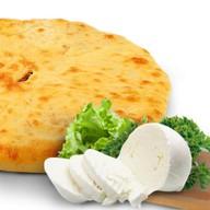 Сыр и зелень Фото