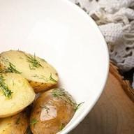 Отварной беби картофель с укропом Фото