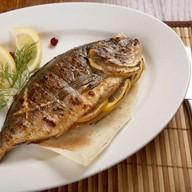 Рыба дорадо Фото