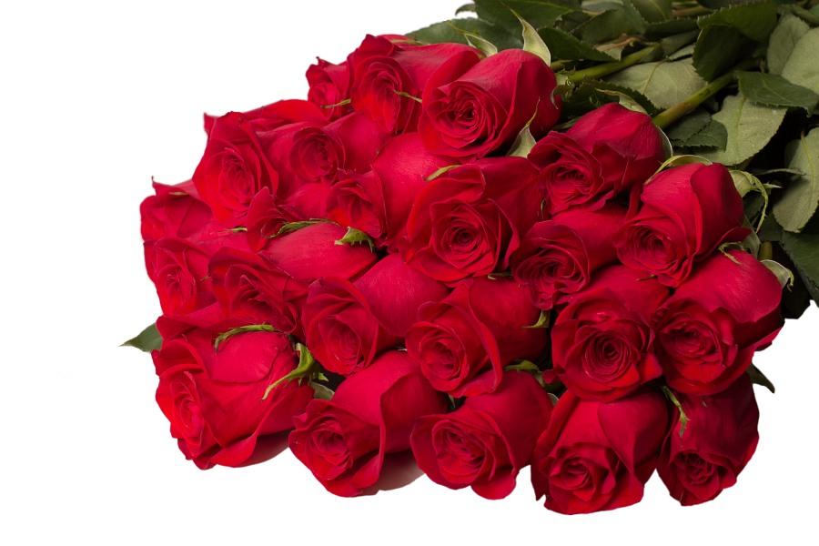 картинки букет роз шикарный